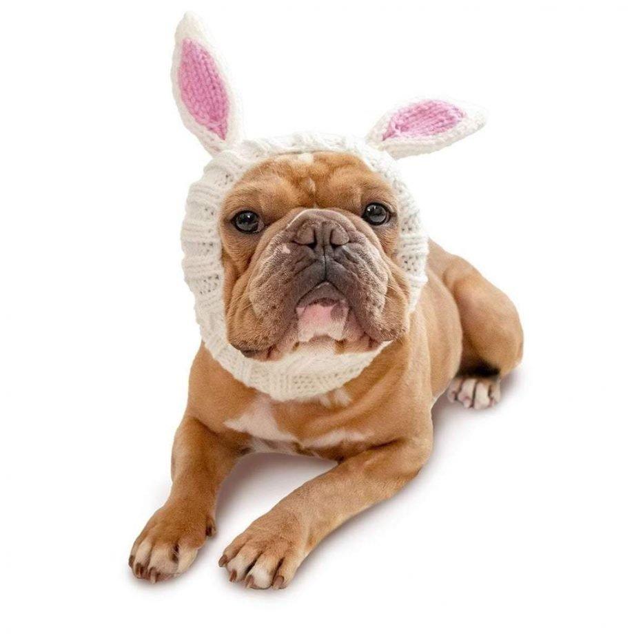 Scaldacollo Bunny Rabbit